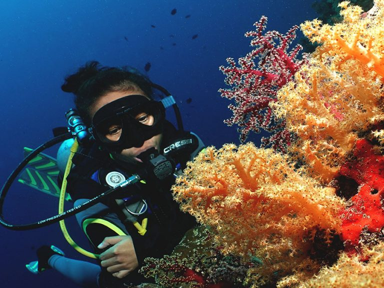 girl and soft coral
